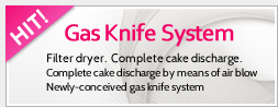 Gas Knife System